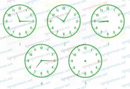 时间的规律