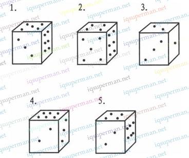 立方体骰子的选择