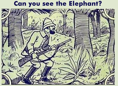 找出那只隐藏的大象