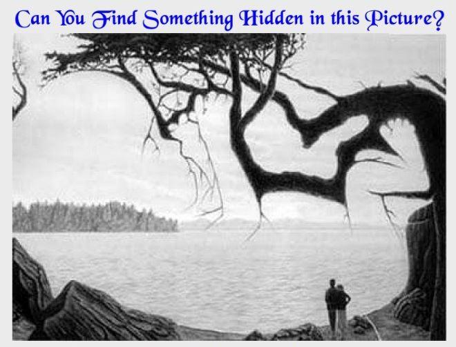 隐藏的东西
